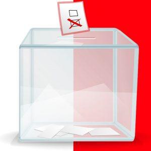 Znamy datę wyborów samorządowych. Zobaczcie dokładny harmonogram